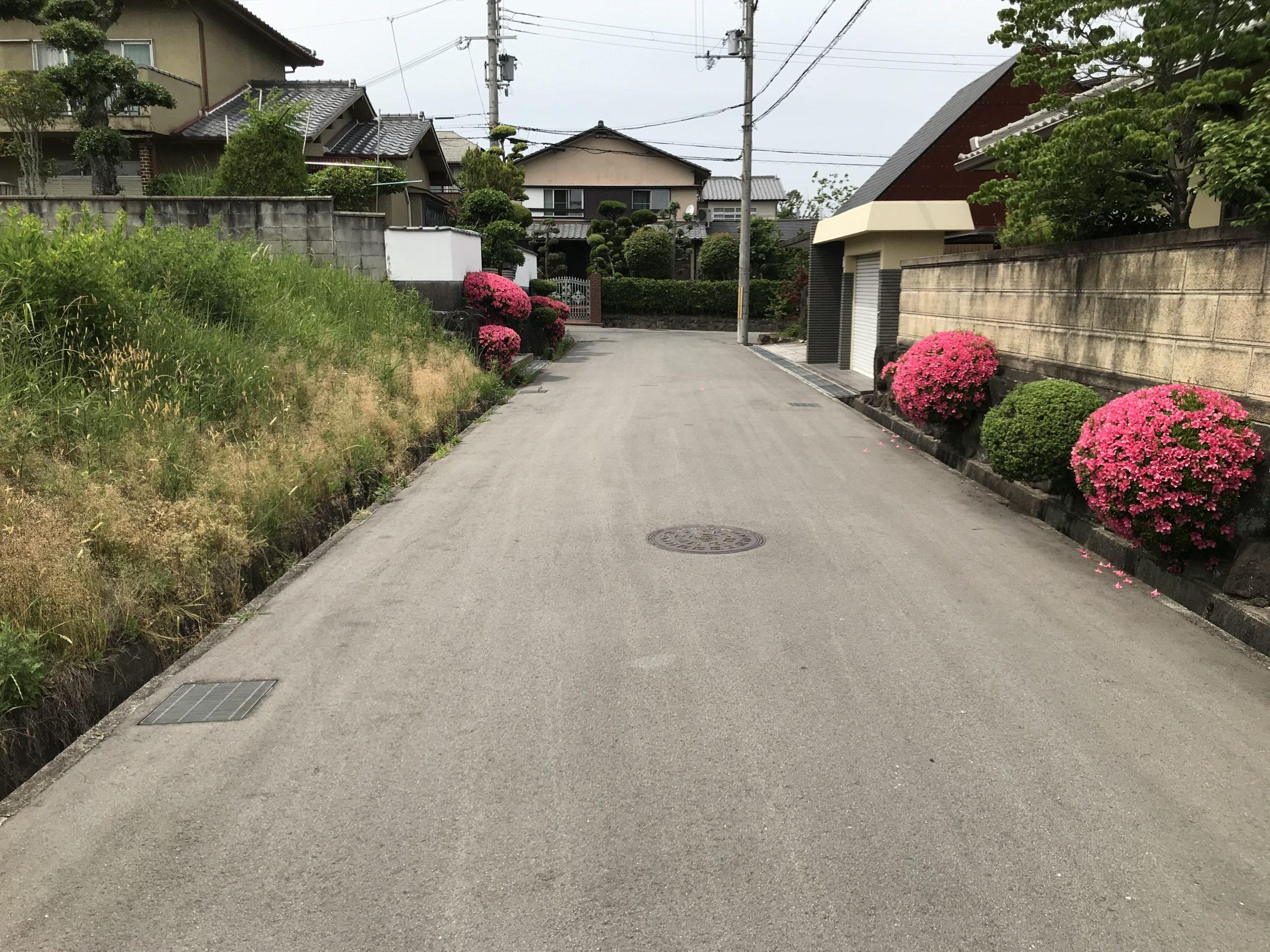 前面道路(外観)